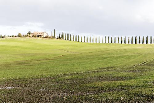 """Ricerca """"I Green Jobs: alcune riflessioni critiche ed uno sguardo alla Toscana"""""""
